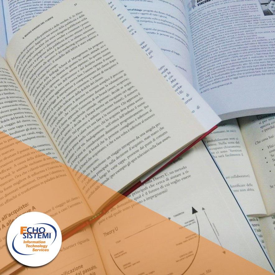 Echo Sistemi, articolo sull'importanza della conoscenza nel business